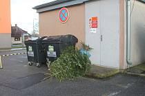 Odložené vánoční stromky