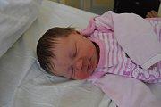 VIKTORIE LIBRCAJTOVÁ, LOUNY-ČERNČICE. Narodila se 7. ledna 2019. Po porodu vážila 3,7 kg a měřila 50 cm. Rodiče jsou Markéta a Aleš. Bratr Martínek.