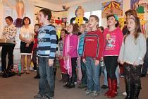 Výstava šitých hraček Radky Batelkové v novostrašeckém muzeu