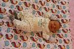 NELI HOCKOVÁ, KRTY. Narodila se 22. ledna 2019 v kadaňské porodnici. Po porodu vážila 2,9 kg a měřila 48 cm. Rodiče jsou Petra Zabavíková a Bohumil Hocek. Doma čeká sestřička Eliška (1 rok).