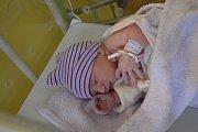 AMÁLKA TESAŘÍKOVÁ, SKUHROV-HATĚ. Narodila se 13. prosince 2018. Po porodu vážila 2,7 kg a měřila 46 cm. Rodiče jsou Žaneta a Roman. Bratr Šimon.