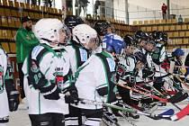 OSLAVA VÍTĚZSTVÍ. Mladší žáci příbramských hokejistů zažili velmi úspěšný víkend. Nejdříve  zvítězili v Soběslavi, kde si s tamějším celkem poradili jednoznačně 5:13 a následně zvládli i domácí duel proti velkým Popovicím, které porazili 4:1. Vítězství pa
