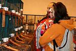 Zimní výstava rakovnických chovatelů 2011