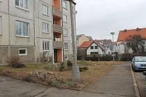 Pařezy po pokácených stromech v Křižíkově ulici