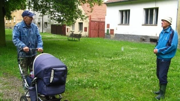 Hřiby na náměstí v Kněževsi