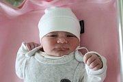 IZABELA KRAJTROVÁ, HOŘOSEDLY Narodila se 9. ledna 2018. Po porodu vážila 3,31 kg a měřila 49 cm. Rodiče jsou Zuzana a Jakub.