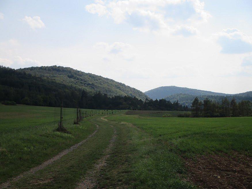 Krajina na Křivoklátsku v okolí Skryjí.