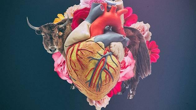 Alternativní kapela Z davu představí desku U srdce jak.