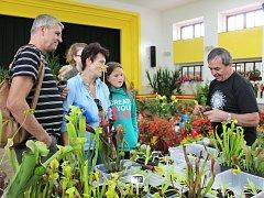 Výstava květin a výpěstků slabeckých zahrádkářů.