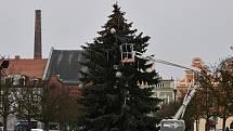 Zdobení vánočního stromku v Rakovníku.