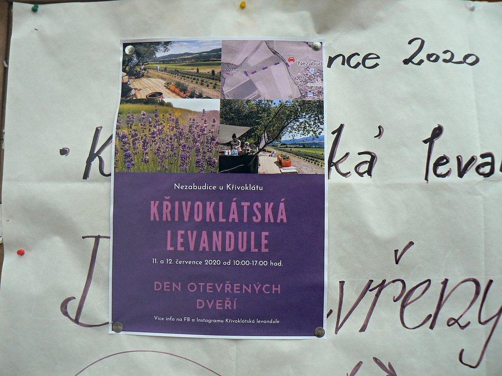 Ze Dne otevřených dveří na levandulovém poli v Nezabudicích.