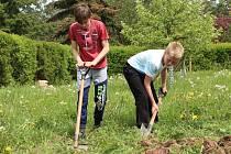 Žáci 3. ZŠ Rakovník pracují na školním pozemku.