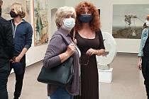 Spolek výtvarných umělců Mánes vystavuje svá díla v Nové síni Rabasovy galerie.