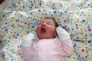 ELENA DVOŘÁKOVÁ, CHÝNĚ. Narodila se 12. října 2017. Po porodu vážila 3,54 kg. Rodiče jsou Martina a Petr.