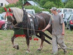 Závody chladnokrevných koní na Rudě