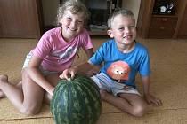 Janě Rédlové se podařilo vypěstovat na zahrádce v Rakovníku meloun o váze 9 kilogramů.