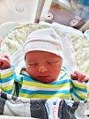 KATEŘINA ZÍTKOVÁ se narodila 22. února v 19:32 mamince Lence a tatínkovi Petrovi z Břas. Po příchodu na svět ve FN Plzeň vážila sestřička tříleté Klárky 3060 gramů a měřila 49 centimetrů.