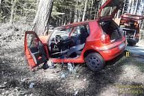Osobní auto si to v pondělí před 16. hodinou namířilo za Líšnou do kmene obřího stromu.