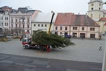 Stavění vánočního stromu na náměstí v Rokycanech.
