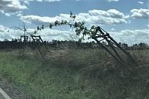 Špatně podepřený stromek je předurčen k zániku...