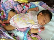 SIMONA NOVÁKOVÁ spatřila prvně světlo světa 23. června 2017 v hořovické porodnici U Sluneční brány a je prvním dítkem rodičů Veroniky Mošnové a Petra Nováka z Rokycan. Simonce sestřičky na porodním sále navážily 3290 gramů a naměřily 46 cm.