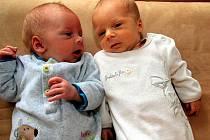 Samuel Šebella a  Sofie Šebellová z Pavlovska se narodili ve FN v Plzni 3. července. Sofie přišla na svět ve 22 hodin a 42 minut s mírami 2 130 gramů a 46 cm. Samuel se narodil jako druhý, ve 22 hodin a 44 minut. Jeho váha činila 2660 gramů, měřil 49 cm.