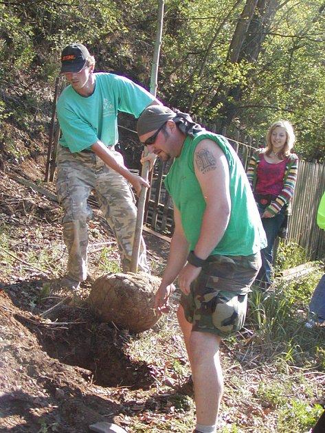 Brigádníci ze základních škol sázeli dřeviny na Stráni.