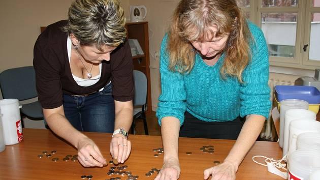 Výtěžek tříkrálové sbírky v prostorách rokycanské radnice počítala Alena Drlíková (vpravo) a spolu s dalšími pomáhala i Eva Praumová.
