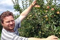 Ve vranovských ovocných sadech zahájili sklizeň jablek. Majitel rozsáhlého areálu Richard Schwarz označil letošní úrodu za průměr. Kvalita je ovšem podle jeho slov dobrá a nyní brigádníci začínají trhat odrůdy Hana i Discovery.