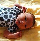 MIKULÁŠ ČERVENÝse narodil 21. února v 8:51 mamince Michaele a tatínkovi Jaroslavovi z Ejpovic. Po příchodu na svět v plzeňské FN vážil jejich prvorozený synek 3670 gramů a měřil 50 centimetrů.