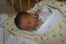 Vladimír VYŠÍN ze Šťáhlav se narodil 4. října v 16 hodin a 35 minut. Malý Vládík vážil při narození 2200 gramů, měřil 46 cm.