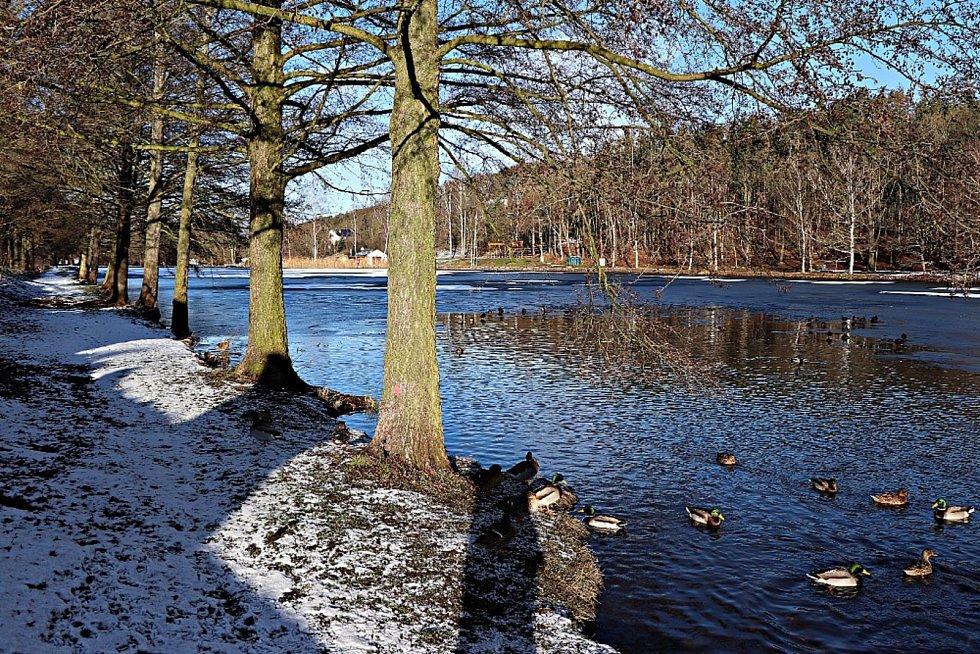Na procházku zimní krajinou láká svými snímky Jaroslav Kreisinger.