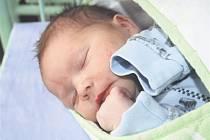 Jakub ROUSEK z Litohlav bude mít ve svém rodném listu datum narození 2. listopadu. Přišel na svět hodinu a 46 minut po půlnoci. Dominika vážila při narození 2 650 gramů, měřila 46 cm.