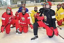 HOKEJISTÉ BĚLORUSKA do 18 let si včera poprvé zatrénovali na rokycanském ledě. Jejich soustředění před světovým šampionátem skupiny B v Maďarsku potrvá týden.