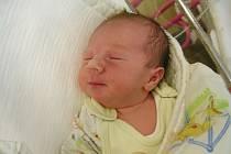 Šimon Beneš – K dcerce Veroničce (16 měsíců) si manželé Iveta a Pavel Benešovi z Mýta pořídili syna Šimona. Šimonek přišel na svět 27. srpna 2019 v hořovické porodnici a vážil 3,40 kg. Foto: Jiřina Marečková