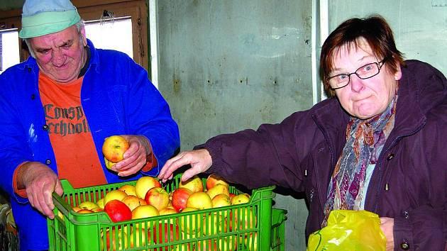 O zákazníky nemají ve vranovských ovocných sadech nouzi ani v těchto mrazivých dnech. Tahle dvojice si pro jablka přijela z Rakovnicka a míří sem prý pravidelně.