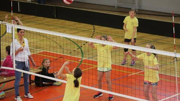 V sobotu 3. listopadu se v hale rokycanského gymnázia konal turnaj v barevném minivolejbalu