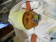 ŠIMON ŠÍSTEK se narodil 28. listopadu v 17:52 mamince Aleně a tatínkovi Petrovi z Hrádku u Rokycan. Po příchodu na svět v plzeňské FN vážil bráška osmiletého Aleše 3030 gramů a měřil 48 centimetrů.