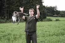 Ladislav Lajbner pouští na svobodu káně lesní, které se v rokycanské záchranné stanici léčilo po úrazu.