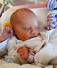 Zora Holubářová je starší z dvojčat, která se narodila 4. prosince v plzeňské fakultní nemocnici mamince Barboře a tatínkovi Martinovi. Narodila se v 11 hodin a 41 minut a její porodní váha činila 2700 gramů a měřila 47 cm.