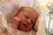VIKTORIE LAŠTOVKOVÁ z Blovic se narodila 28. dubna před půlnocí. Manželé Lucie a Jiří už mají doma dceru Lilianu (3,5 roku) a nechali si pohlaví druhého dítěte jako překvapení na porodní sál. Malá Viktorie vážila 2900 gramů, měřila rovných 50 cm.