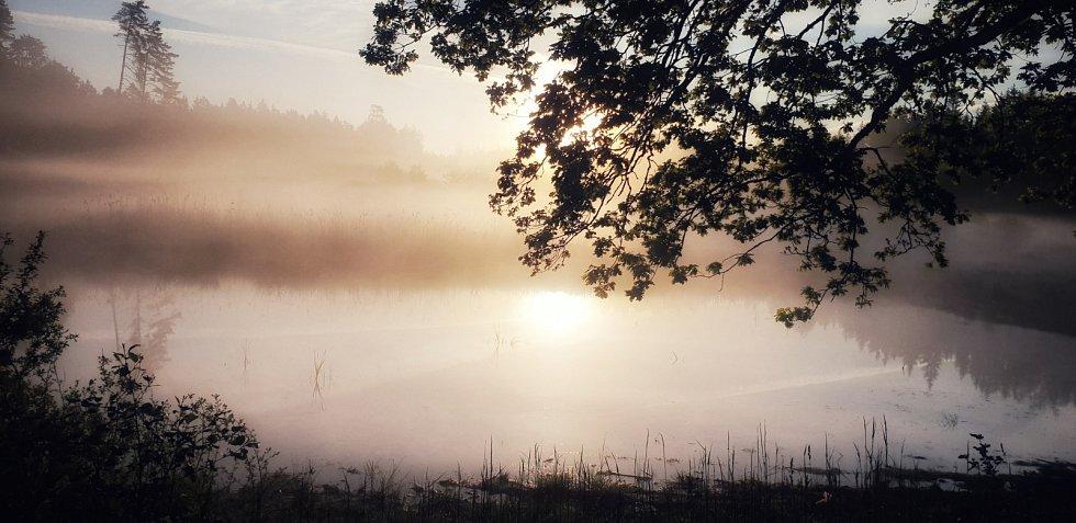 Podzim a mlha na Rokycansku.