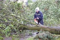 Odklízení následků bouře (ilustrační foto)