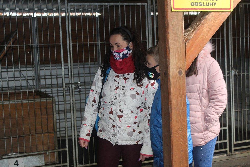 Středa 23. prosince byla šancí k návštěvě odchytového zařízení