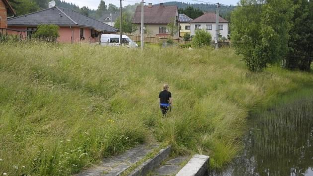 Ilustrační foto - Přerostlá tráva na Pavlovsku