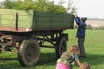 Ochránci přírody a nadšenci sázeli stromky v Litohlavech