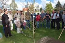 ZA ROKYCANSKOU FARNOST požehnal stromu vikář Samuel Andrzej Wegrzyn. Buk u kruhového objezdu poblíž Střelnice bude připomínat 430 let od povýšení na královské město.