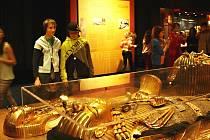 Výstava budila obdiv u všech návštěvníků. Dívat se bylo na co.