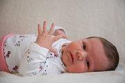 SÁRA TOMKOVÁ se narodila v porodnici v Hořovicích 2. ledna v 18:45 hodin, její míry byly 3910 g a 49 cm. Rodiče Marie a Michal znali pohlaví miminka dopředu. Doma netrpělivě čekal starší bratr Sebík, který si holčičku vysnil a hrozně si jí přál.