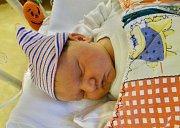 NATÁLIE PLACHÁ se narodila 4. ledna ve 2.30 mamince Janě a tatínkovi Zdeňkovi z Příkosic. Po příchodu na svět v plzeňské fakultní nemocnici vážila sestřička Michalky a Toníka 3150 g a měřila 51 cm.